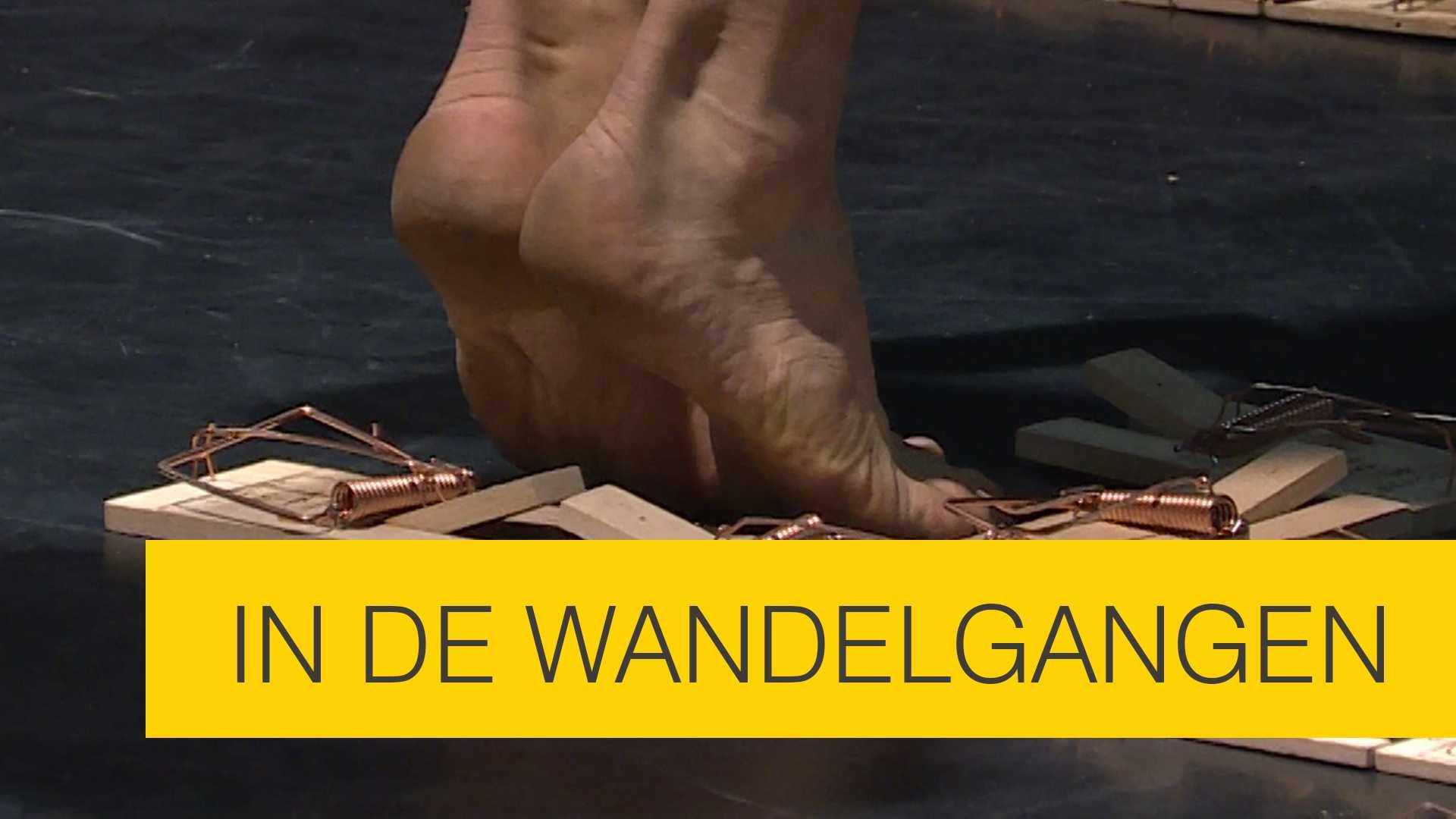 In de wandelgangen: Werkbezoek aan het Circuscentrum Vlaanderen