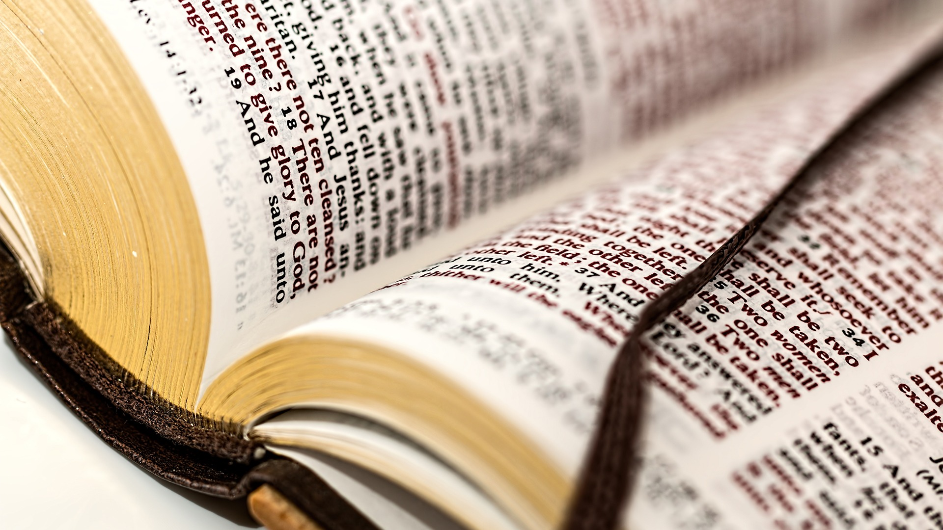 Vlaamse bisschoppen willen bijbelkennis van leerlingen aanscherpen
