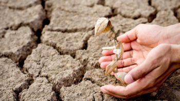 Vlaams Parlement keurt brede weersverzekering goed